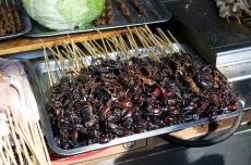 Crunchy Scorpions