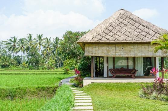 Bali-1365